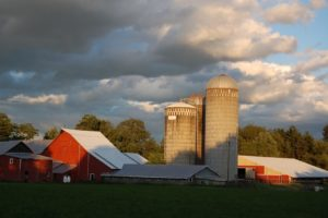 A Rondout Valley farm, Accord, NY