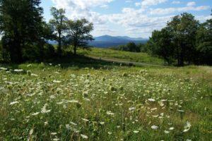 Spring Farm, Mohonk Preserve